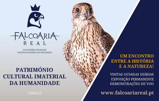 Falcoaria Real de Salvaterra de Magos